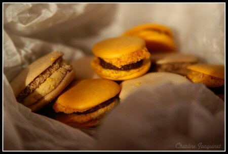 Marie_Laure_Macarons4