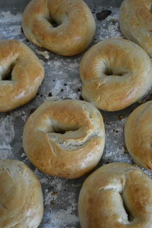 Bagels (3)