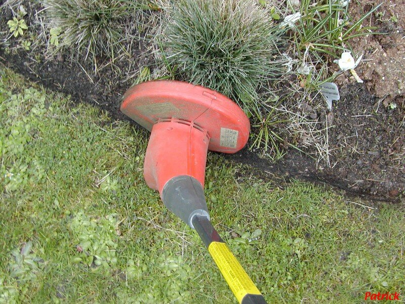 est il utile d a rer la pelouse apr s l 39 hiver le jardinoscope cot pratique les bons gestes. Black Bedroom Furniture Sets. Home Design Ideas