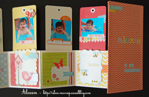 Alexam_mini_tags_lift_ES_Fabric_S_RDV_Scrap_5