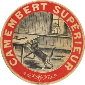 camembert_sup_rieur
