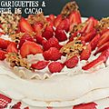Pavlova aux gariguettes et tuiles au gru de cacao