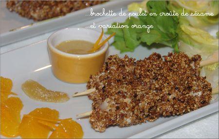 Brochette_de_poulet_en_croute_de_s_same_retouch_e