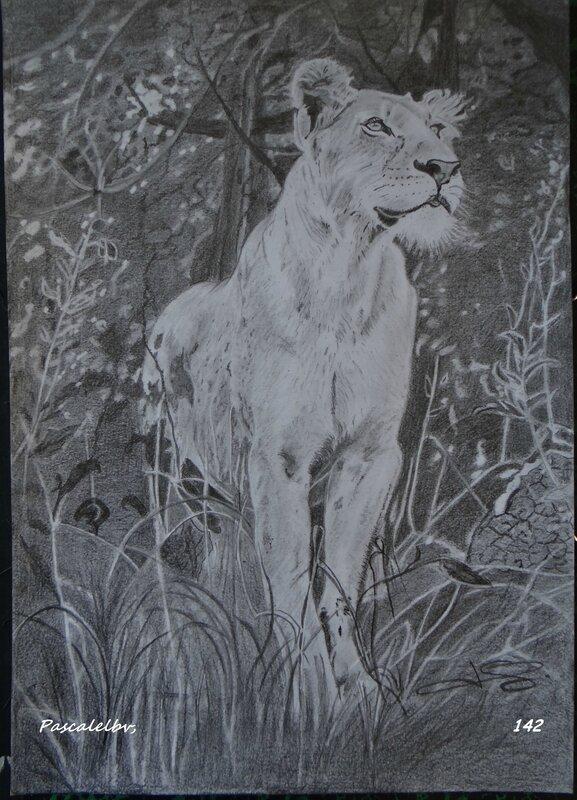 12 LA LIONNE - Copie
