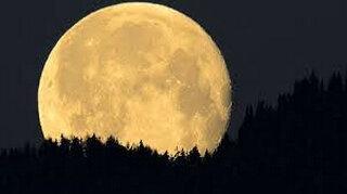 Lune-Pleine jaune
