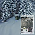 « le poids de la neige » de christian guay-poliquin