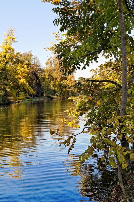 Bois_de_Boulogne_automne__12_