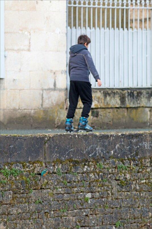 ville MP mur roller 241216 2