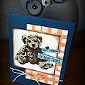 Une carte avec un bébé ourson...