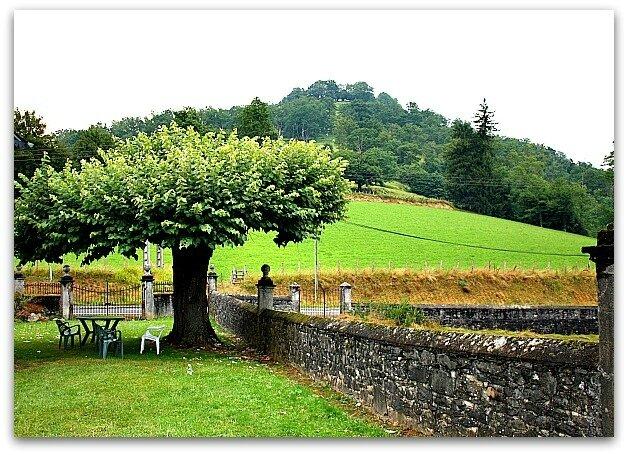 badou arbre parasol 2[1]