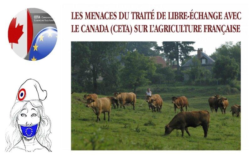 MONTAGE CETA AGRICULTURE