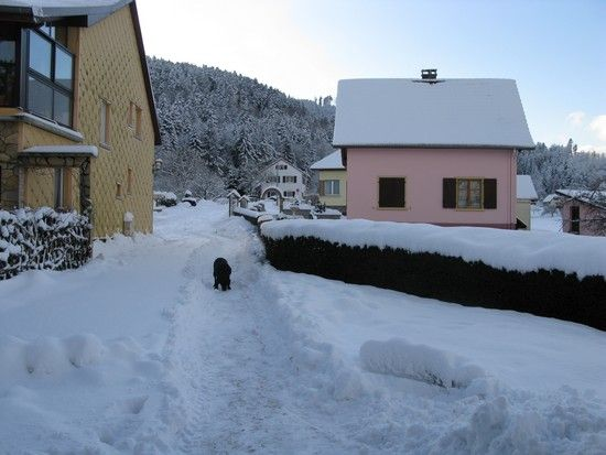 Rimbach_en_hiver_005
