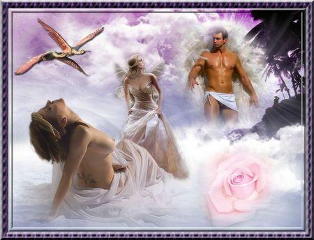 La belle et les anges