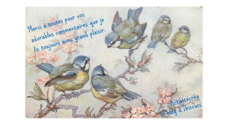 oiseaux a