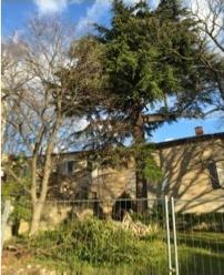Le jardin du presbytère en danger