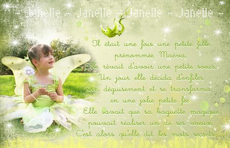 11x17_FPN_Janelle_DEVANT__developper