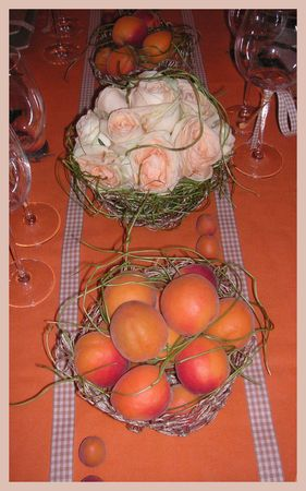 2009_07_07_table_abricots18