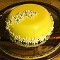 chocolat blanc pralin