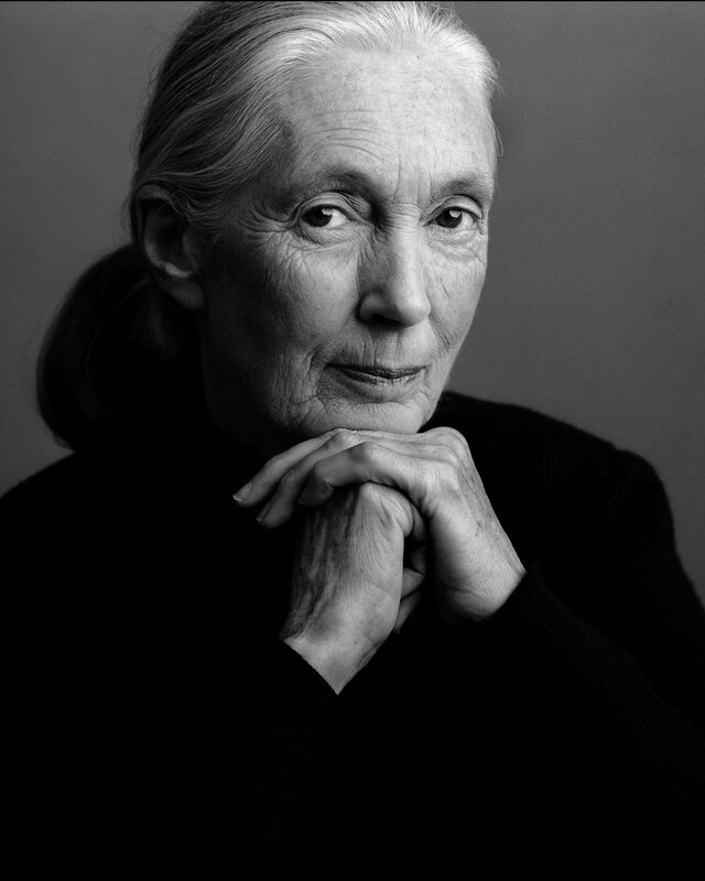 http://www.dominican.edu/dominicannews/jane-goodall-tops-spring-leadership-lecture-series-lineup