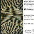 Exposition Guillaume Guintrand - Pllo