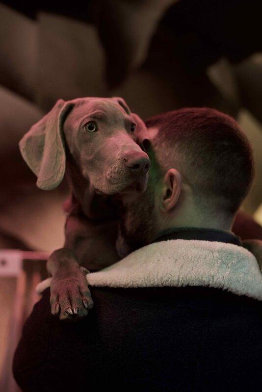 maître et chien - 1