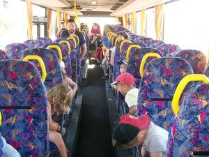 bus (17)