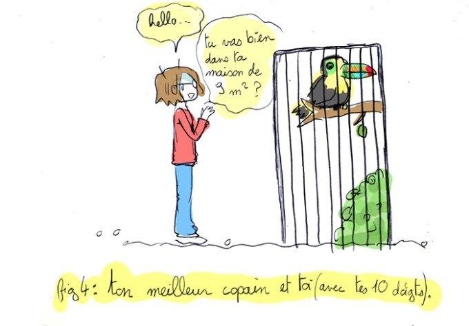 parc-oiseaux02-1-1