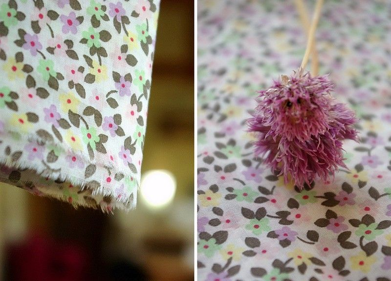 02_coton_ptes_fleurs