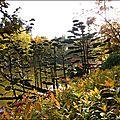 2012_11_11-POM-P1140503