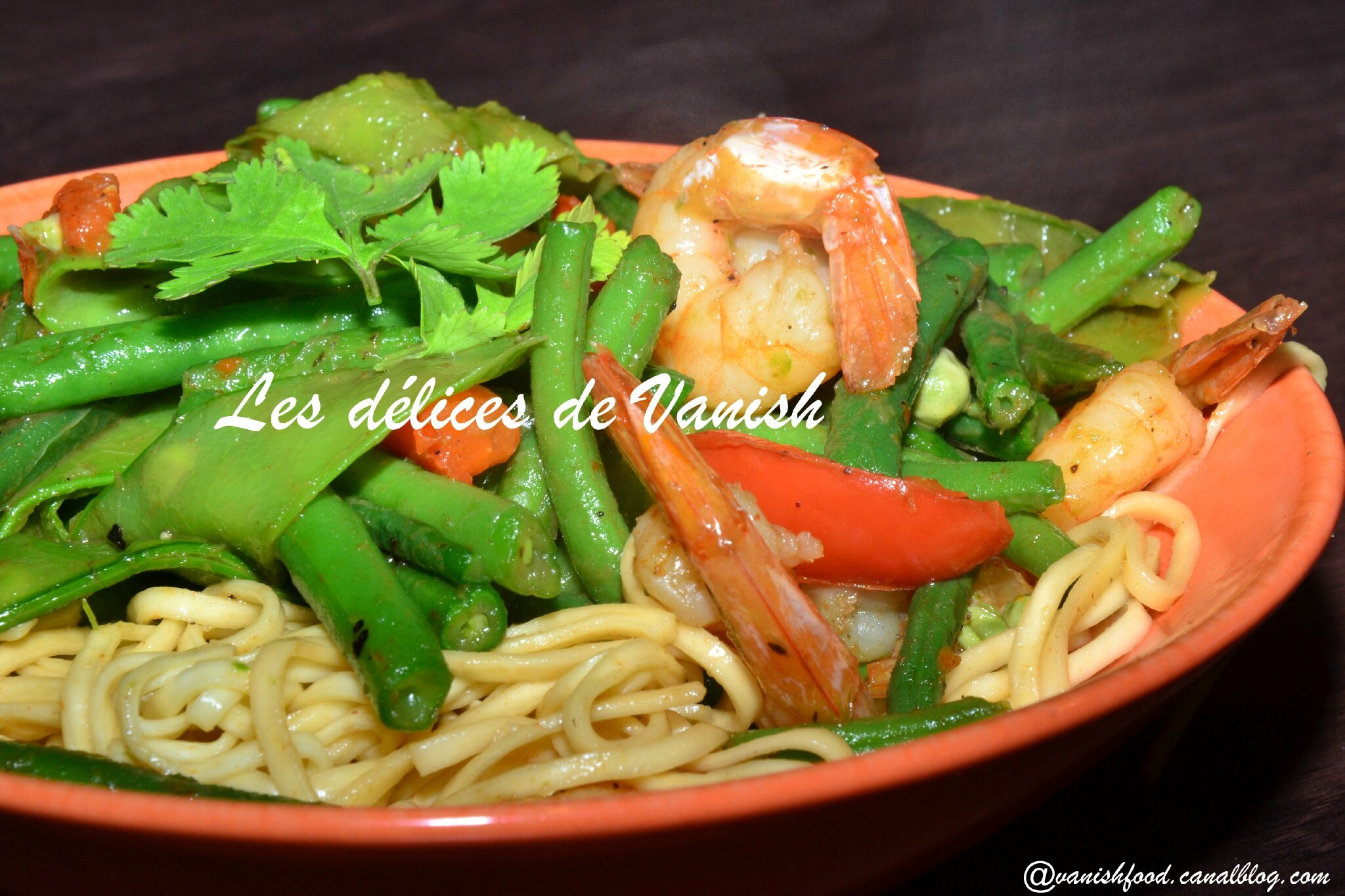 wok de crevettes aux nouilles et l gumes les d lices de vanish. Black Bedroom Furniture Sets. Home Design Ideas