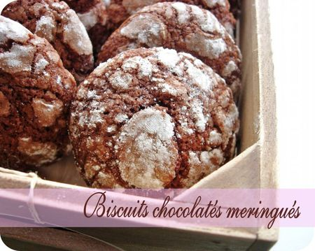 biscuits chocolatés (scrap4)