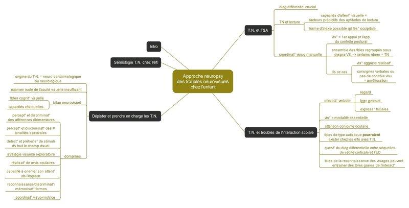 approche neuropsy des troubles neurovisuels chez l'enfant 2_Page-1