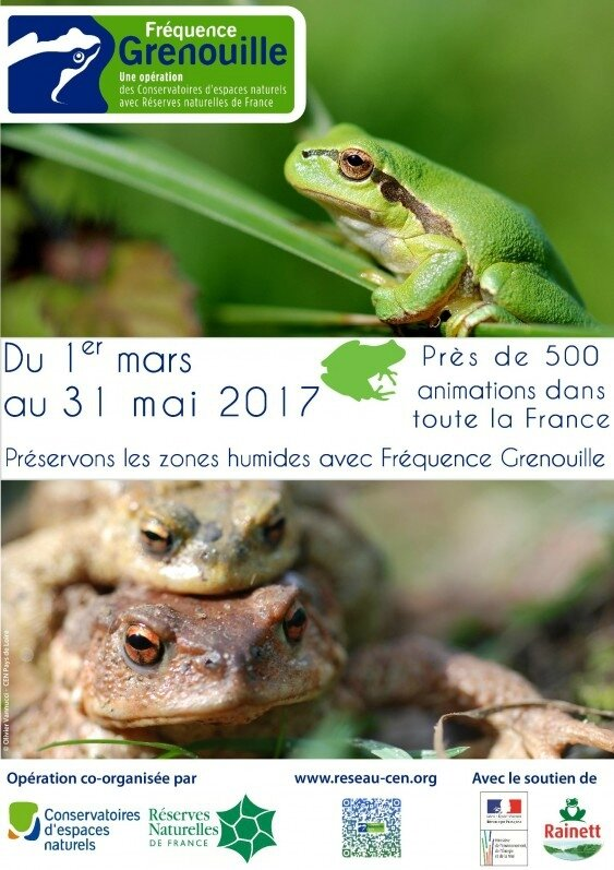 affiche_frequence_grenouille_2017