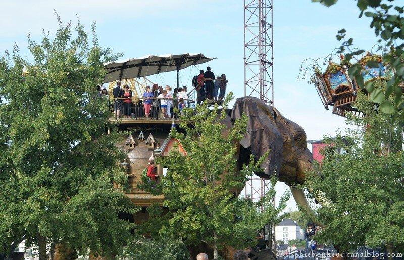 VAN3 éléphant