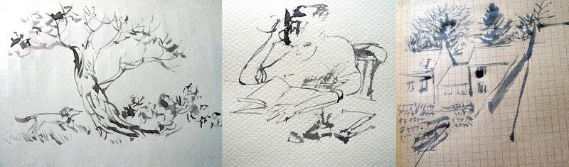 w-dessins