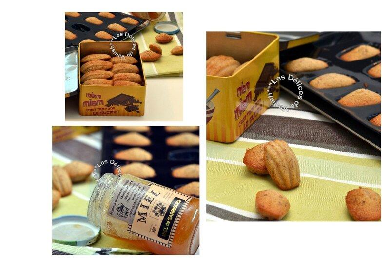 madeleines, miel, amandes, noisettes, miel de garrigue