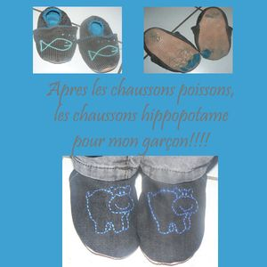 CHAUSSON_HIPPO