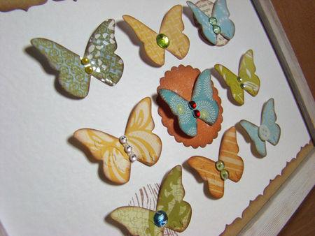 tableau_papillons_d_tail