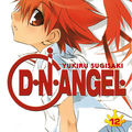 Dn angel volume 12