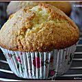 Muffins à l'orange et noix de coco