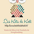 Mini nov. 2016 - guest boutique les kits de kali