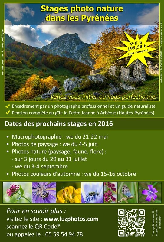 LuzPhotos_Flyer-stages-photo-nature-2016