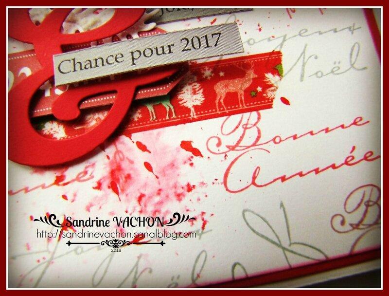 Sandrine VACHON Défi 457 (4)