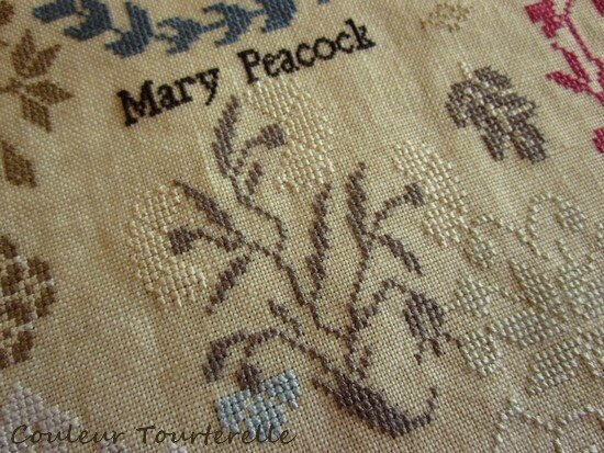 Mary Peacock sampler - Couleur tourterelle 3-8