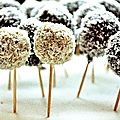 Roll Cake Pops Banane Chocolat Coco