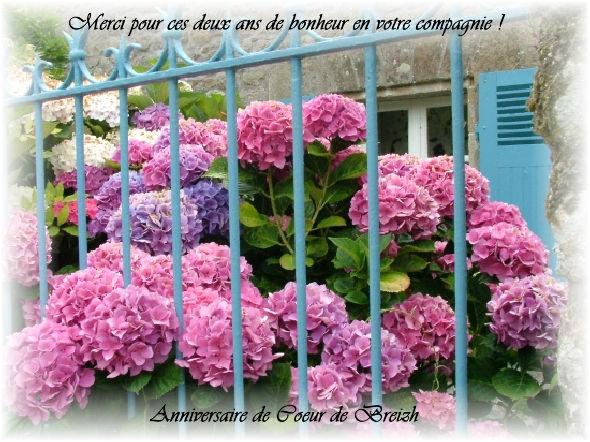 hortensias_autres_maisons_arradon_france_3612939716_878861