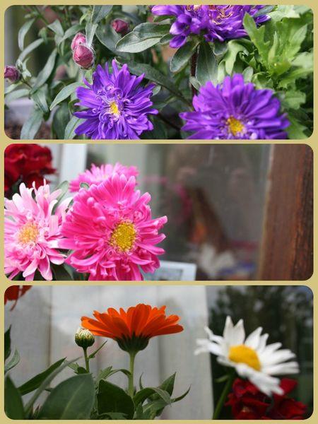 Un week end m lisse lili cahou te ses pistaches for Le jardin des fleurs bourges