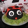 Gâteau coccinnelle