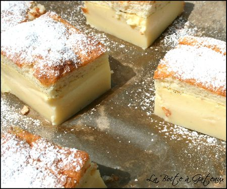 Magic Custard Cake__