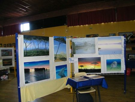 expo chaussin 2012 027